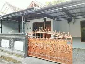 Rumah Cantik 3KT Disewakan Bulanan d Cekomaria dkt Seroja Nangka Gatsu
