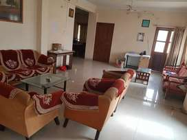 Luxurious full furnished two guest house for rent