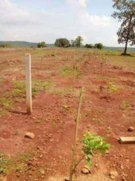 Agriculture land for rent at mansarovar extension