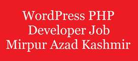 require a front end wordpress developer living in mirpur