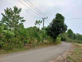 Dijual Tanah Kavling Murah luas 1000m² pinggir jalan hanya 490jt