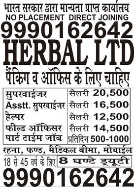 JOBS OPENING IN HERBAL LIMITED