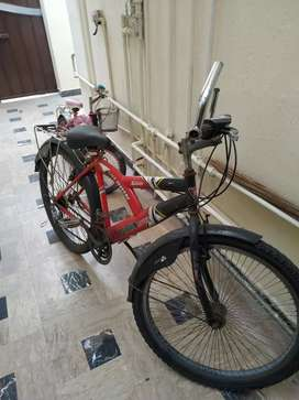 DOLPHIN RIVER BICYCLE