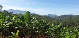 2 acre Resort land/8lakhs/acre