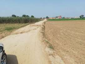16 kanal land for sale kasur city