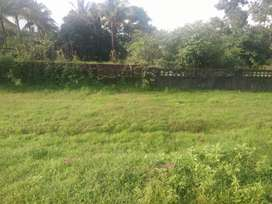 NA settlement with sanad plot of 300 sqmtr for sale in paroda, Quepem