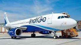 We have multiple opening for Airport job freshers and experienced both