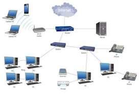 IT Networking Hardware & lan designing / Internet