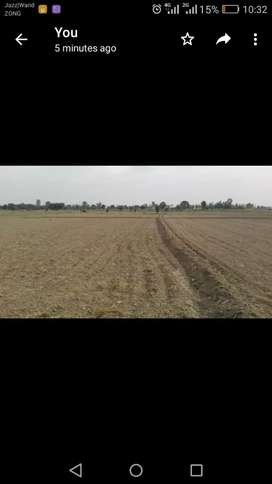 Agri land for salei