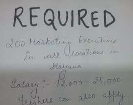 Marketing executive required