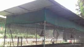 Poultry farm shed materials   for sale