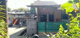 Rumah kampung bebas banjir di jombang, posisi HOOX bisa KPR