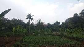 tanah murahh 1700m