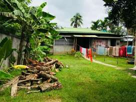 RCC foundation with assam type house for sale