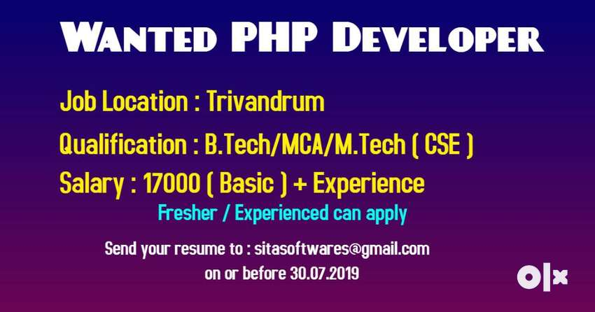PHP Developer 0
