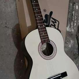 Distributor gitar solo