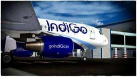Amrawati - Indigo Airlines / All India Vacancy opened in Indigo Airlin