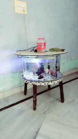 fish aquarium new model