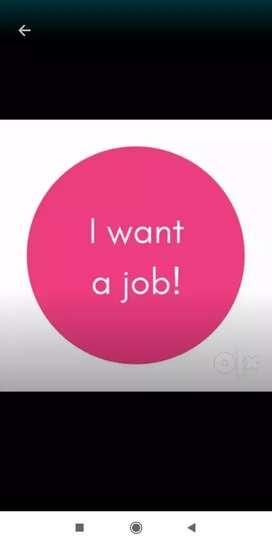 I want job (Seeking job)