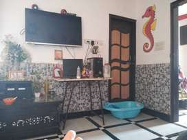 House/Room Rent In DLF Ankur Vihar