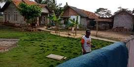 Segera BU Jual Tanah Di Cabang Bungin