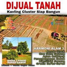Jual Tanah Murah Bonus Pohon Durian, ready stock