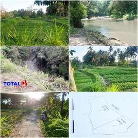 Dijual Tanah Los Sungai Murah Hrg 200 Jtan/are Nego @Bongkasa, Badung