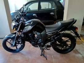 Yamaha Fz 2016 model for sale