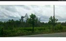 Tanah di pinggir jalan raya Banjarmasin Marabahan letaknya strategis