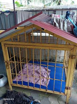Dog cage 2 months old