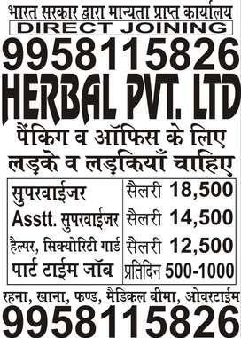 GIRLS / BOYS SUPERVISOR JOBS OPENING IN HERBAL LTD