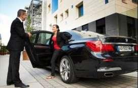Car drivers and chauffeurs provider Agency in delhi calll 99114 nine 1