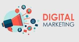 Digital Marketing Training (Online)
