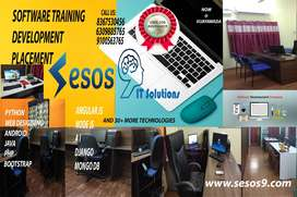 Software Training and Placement