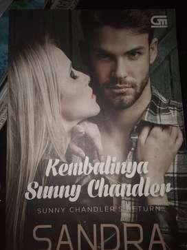 "Novel "" kembalinya Sunny Chandler"""