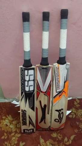 Hard ball cricket bat English willow