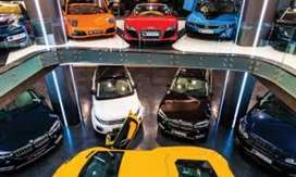 Luxury Car Driver Required
