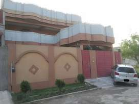 Portion Available for Rent In OPF colony