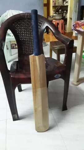 Cricket new bat