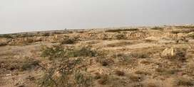 270 acre land for sale