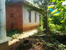 Urgent sale 2.52 cent House and plote 4.25 ( Fixed price )