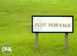Want to sall my commercial plot