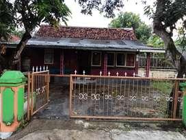 Disewakan rumah kontrakan atau per kamar maos klapagada cilacap