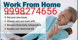 Work from home Work daily Payment mode NEFT