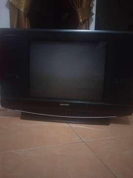 Tv Sharp 21 inch alexander slim II dynamic sound