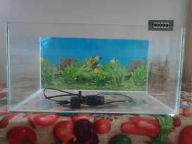 Fish aquarium and water filter (good condition(