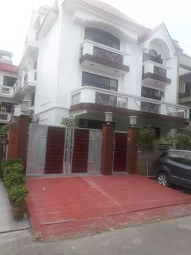 Noida sector 51 Bungalow@ 8 cr. 540 yards 12 BHK House