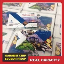 Souvenir USB Bentuk Model Card Cetak (Flashdisk Kartu Custom Promosi)