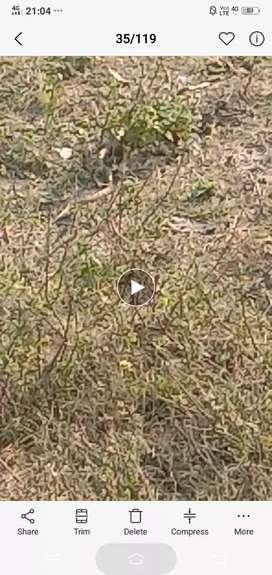 Plot at rehman kheda 1 km from jehta road