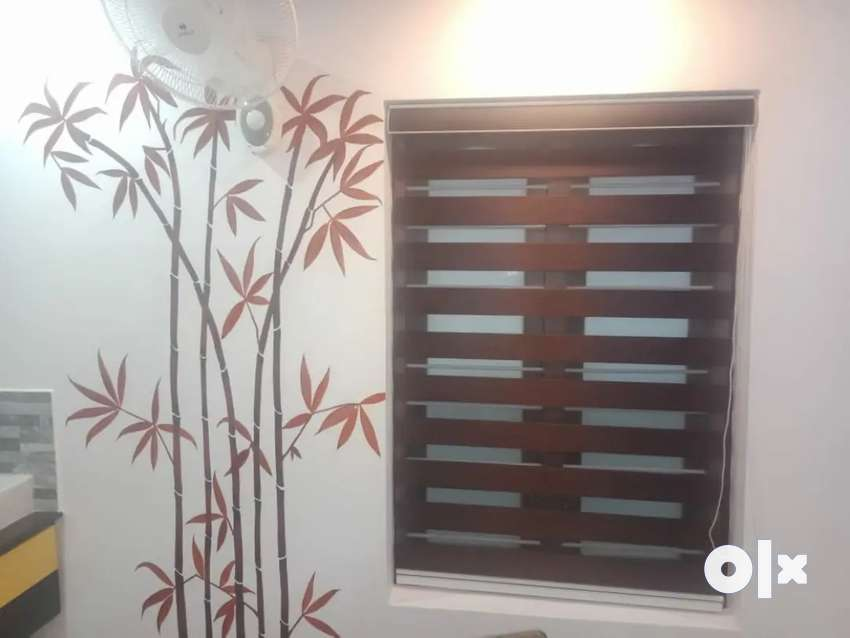Curtains, wallpapers, wooden flooring:NEW YEAR OFFER 0